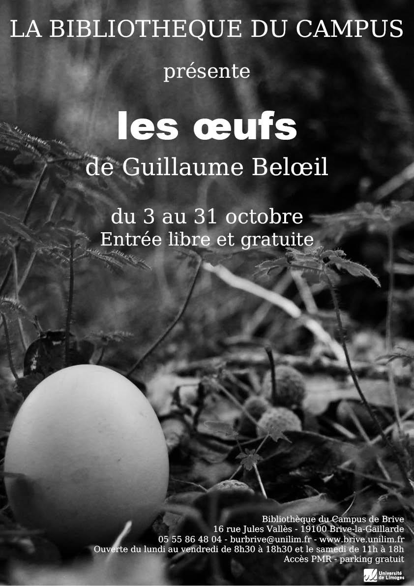 Affiche de l'exposition de Guillaume Beloeil